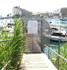 בעלי סירות במרינה לחכ''א: הגני על רכושנו!