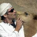 הלוחש לגמלים