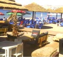 האם נמכר אלכוהול לקטינים בחוף 'בלו ביץ''?