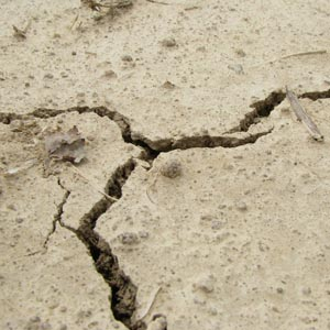 רעידת אדמה קלה הורגשה באילת