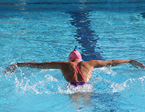 שחייה: בצמרת הארצית
