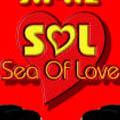 ים של אהבה