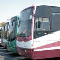 משרד התחבורה שוקל הפעלת תחבורה ציבורית לים בשבתות