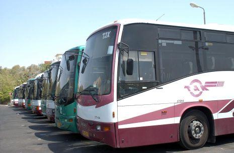 תחבורה ציבורית באילת : מה עושים  כשהנהג לא עוצר בתחנה ?