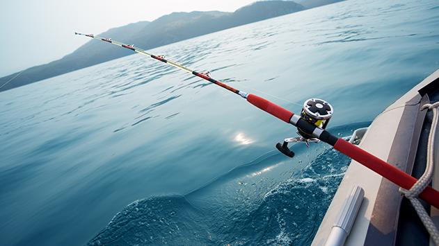 מותר או אסור לדוג עם חכות במפרץ אילת?