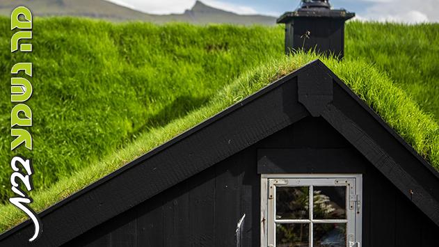 גגות ירוקים