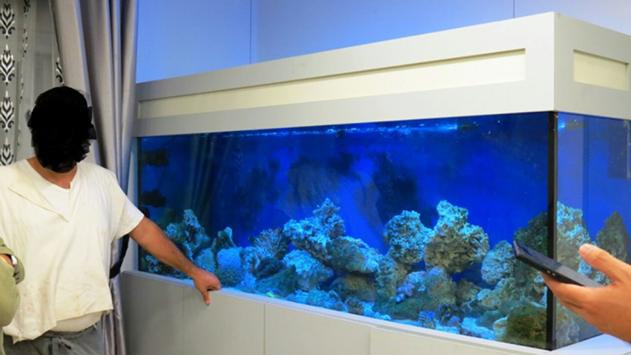 אסף אלמוגים וערכי טבע לאקווריום הביתי ונקנס בעשרת אלפים ₪