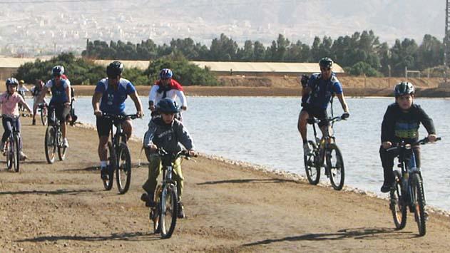 מדוע מתעכב מכרז השכרת האופניים
