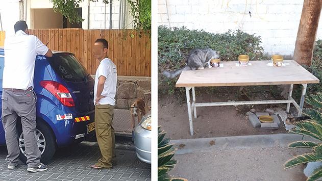 תושבי שכונת ידע ונוי כועסים: העירייה לא אוכפת איסוף צואת כלבים