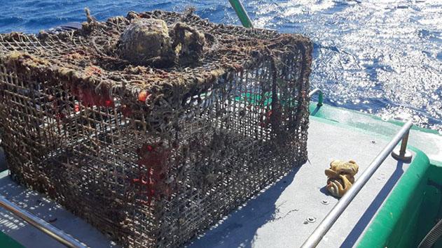 מלכודות דיג נטושות נמצאו בקרקעית הים
