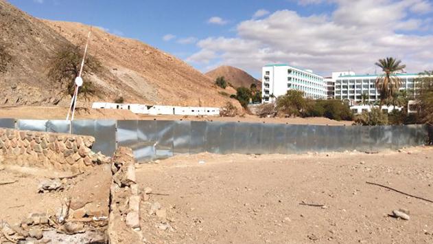 פונה חוף חברת חשמל