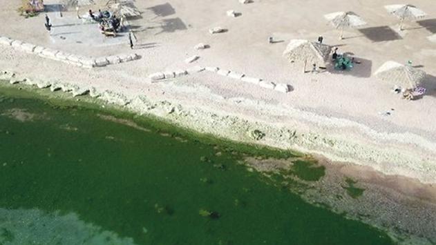 תעלת הקינט שוב''פורחת''  ולא לטובה