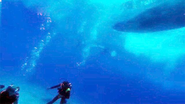 צוללים במפרץ אילת מזהירים:  ''זה רק עניין של זמן עד שסירת  מנוע תפגע בצולל''