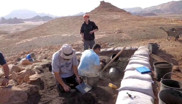 שרידי הצבע היוקרתי ארגמן מתקופת  התנ''ך נמצאו בחפירות תמנע
