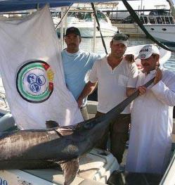 דייג בעקבה: לכדתי את הדג הגדול ביותר במפרץ אילת