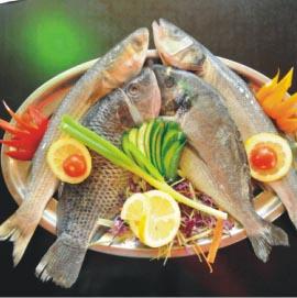 מסעדת המפרץ אילת