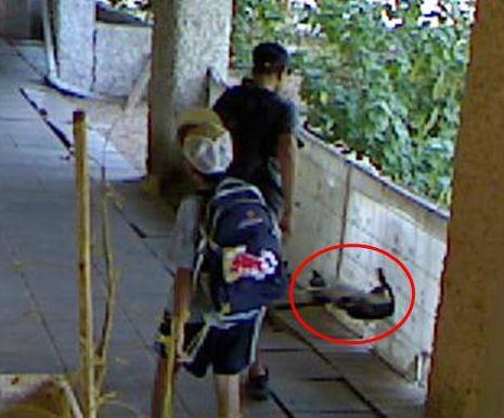 נער חשוד בהתעללות בחתול