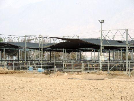 בגלל שדה התעופה החדש: תחנת ההסגר לבקר נשארת באילת