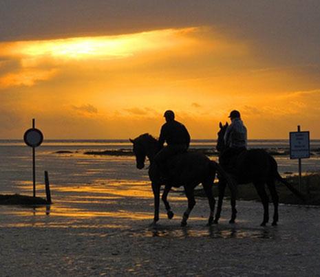 רכיבה על סוסים – רומנטיקה במיטבה