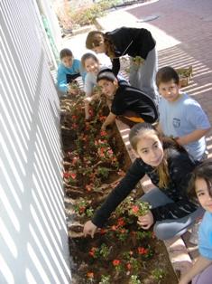 חוקרים צעירים בבית ספר 'יעלים'