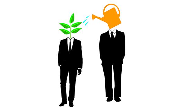 מה תפקידו של מנטור עסקי