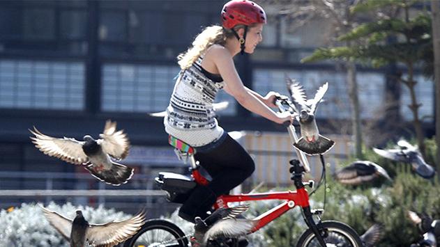 אופניים חשמליים – כללי הבטיחות בדרכים
