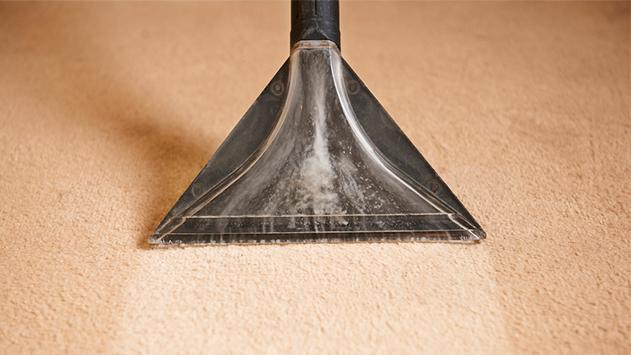 ניקוי שטיחים – למה זה חשוב?