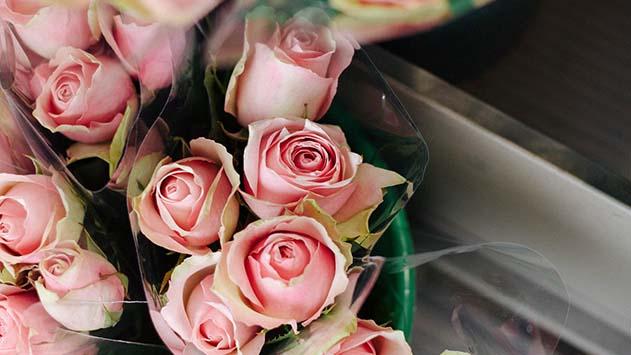 מה חשוב לדעת על זר פרחים בקופסא?
