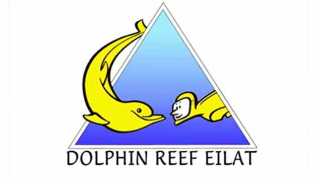 ריף הדולפינים -  גן עדן אקולוגי לדולפינים ולבני אדם