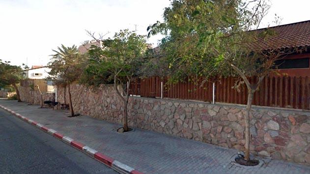 תושבי גנים א': ''העצים בשכונה גוססים''