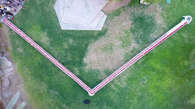 רולדת התמרים הארוכה בעולם