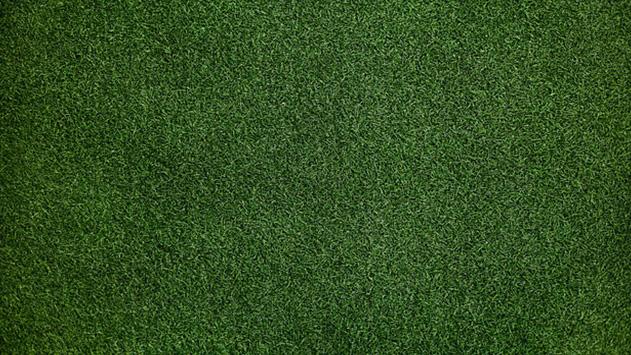 התקנת דשא סינטטי למי זה מתאים?