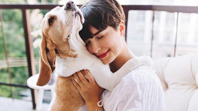 מנפלאות הרשת: איך האינטרנט מקל עלינו בגידול כלבים?