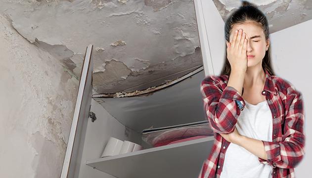 בגלל מצבה של דירת עמידר - בת  ה–12 לא מעזה להביא חברים הביתה